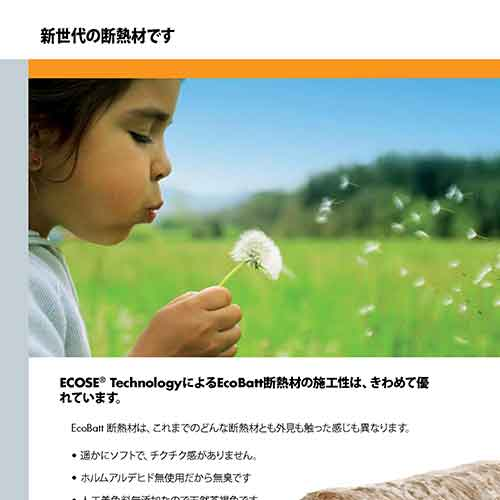 Knauf Earthwool Brochures Japanese